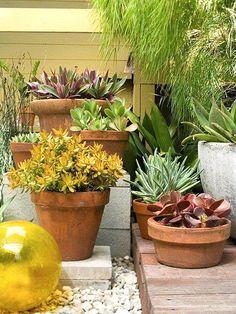 #Jardins de vasos com cactos podem ser uma excelente solução para varandas a pleno sol. Quem tem em casa? #decoração #ficaadica