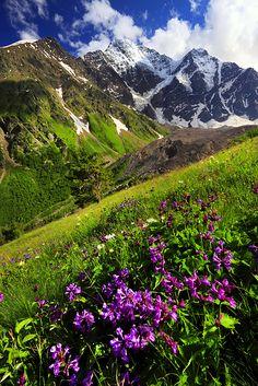 İnsan kökvatanını nasıl tanıyor. Görür görmez aa burası ne kadar Kafkasya'ya benziyor, dedim. Ve işte! - bte. > Caucasus, Russia.