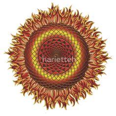 Feuerblume - Blume des Lebens