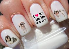 Hey, I found this really awesome Etsy listing at https://www.etsy.com/listing/241901112/56-shih-tzu-nail-decals