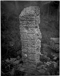 Stela D, 1885 photo by Maudslay, Alfred Percival, 1850-1931