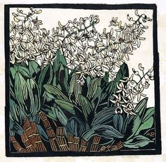 Print - Australian Rock Lily by Margaret Preston 1st proof from an edition of 12, printed in black ink, hand coloured on off white Japanese paper.
