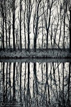 untitled (landscape #37) by Jobst D. Küker #landscapephotography #photography