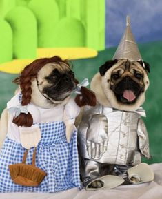 These are the cutest costumes... I want the Dorothy costume for my Sophia sooo cute