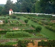 """Lower Garden - also known as the """"kitchen garden,"""" where you'll discover a delectable variety of fruits and vegetables. Much of the produce that appeared on the Washingtons' table was raised in this brick-walled, sunny spot located directly behind the stables."""