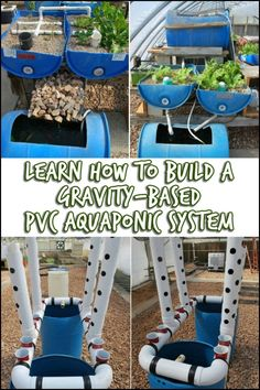 This easy-build, gravity-based aquaponic garden is a very efficient system that makes producing your own food possible and easy. :)