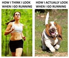 How I think I look when I go running. How I actually look when I go running. The truth is I look like a basset hound, not as the pretty girl from the picture :) Running Humor, Running Quotes, Running Motivation, Gym Humor, Fitness Motivation, Funny Running Memes, Workout Humor, Running Tips, Marathon Motivation