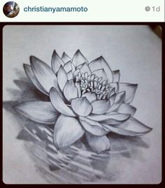 Stunning lotus flower tattoos for women pop tattoo pinterest i like the shape of this lotus the lotus flower tattoo designs are a sign that they have overcome something difficult or hard in their own life mightylinksfo