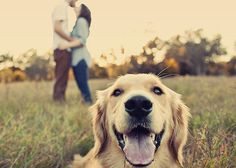 Another great idea to bring in our pup into the engagement pictures!  <3