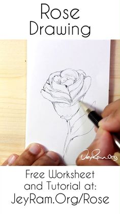 Learn How to Draw Roses: Tutorial & Printable Worksheet Grab the free worksheet and tutorial on the Flower Drawing Tutorials, Flower Sketches, Art Tutorials, Rose Sketch, Pencil Art Drawings, Cool Art Drawings, Art Drawings Sketches, Pencil Sketching, Learn To Sketch