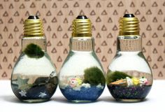 These Japanese moss ball DIY light bulb aquariums are easy enough even the kids can create them! Makes a great weekend DIY kids craft project!