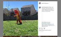 Tyrannosaurus+rex+joutui+jahdattavaksi+–+saa+koiranpennut+peräänsä+herttaisella+videolla Tyrannosaurus, Jurassic Park, T Rex, Parka, Planets, Puppies, Culture, My Love, Instagram