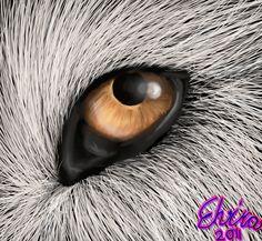 Wolf Eye by Neovirah.deviantart.com on @DeviantArt