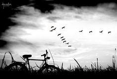 los recuerdos son gusanos que se comen el presente para transportarnos al futuro....