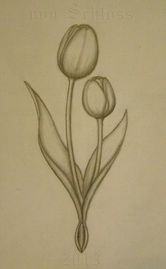 Dutch Tulips sketch for a custom tattoo. by vonSchloss.deviantart.com on @deviantART