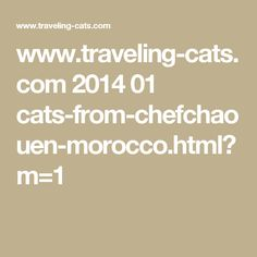 www.traveling-cats.com 2014 01 cats-from-chefchaouen-morocco.html?m=1