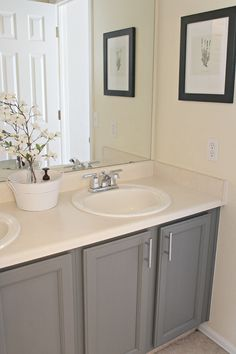 Photo Gallery For Photographers allen roth Espresso Rectangular Bathroom Mirror M Lowes Vanities and Allen roth