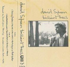 David Sylvian - Brilliant Trees cassette