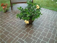 I really want to stencil this pattern on our patio in the spring!