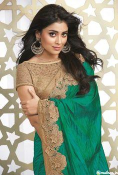 Shriya saran Fashion Saree Collection - shriya-saran-Saree-33 Shriya saran Fashion Saree Collection