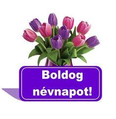 Happy Birthday, Plants, Happy Brithday, Urari La Multi Ani, Happy Birthday Funny, Plant, Planets, Happy Birth
