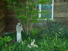 St. Francis garden
