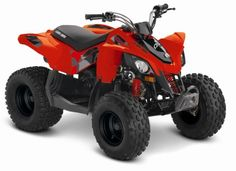 ATV COPII  Can-Am DS 90  2018