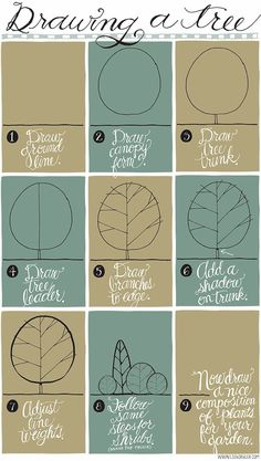 Drawing a Tree by Lisa Orgler Design