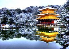 Golden Pavillion. Kyoto. Next stop on the bullet train.