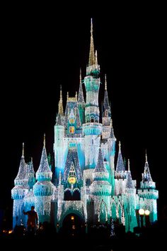 saw the Disney Castle at Christmas a couple years back and it looked like this!