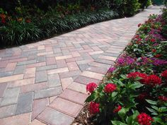 Crimson Rose brick paver walkway installed by Fineline Pavers in Delray Beach, Florida. Flagstone Walkway, Front Walkway, Brick Pavers, Hardscape Design, Delray Beach, Tampa Florida, Pathways, Garden Paths, Outdoor Living