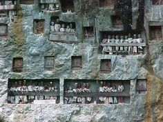Cemetery on cliff - Tana Toraja - South Sulawesi