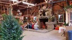 Christmas Trees   heritagefarms #barnpros #barns #barn #prefabbarns #barnhomes #barnkits #barnswithapartments #barnbuilding #barnhouses #barnkit Prefab Barns, Barn Kits, Christmas Tree Farm, Farms, Plants, Pole Barn House Kits, Homesteads, Plant, Planets