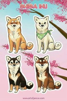 Shiba Inu stickers by TheJindoDogShop on Etsy Animal Drawings, Cute Drawings, Chien Shiba Inu, Cute Puppies, Cute Dogs, Animals And Pets, Cute Animals, Hachiko, Japanese Dogs