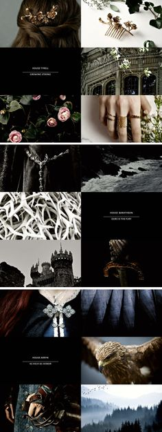 game of thrones + houses [6/9] #asoiaf