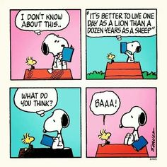 Snoopy..truth in the word!
