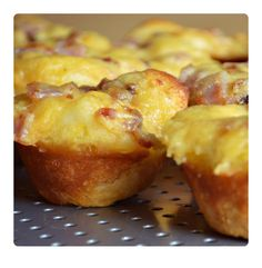 Cheddar Ham Cups- Perfect Appetizer