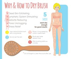 Dry brushing your skin affects your lymphatic system and benefits your health. It detoxifies your skin and aids in the removal of stretch marks & cellulite. Benefits Of Dry Brushing, Dry Body Brushing, Cellulite, Exfoliating Face Brush, Exfoliating Gloves, How To Exfoliate Skin, Lymphatic System, Tips Belleza, Stretch Marks