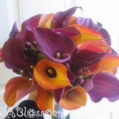 orange and purple flowers | Purple/Orange Bo-K Flowers?