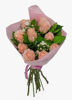 Gauteng Flower & Gift Delivery for all occasions. Whether you are looking for luxury or budget, our flower shops have what you are looking for. Gift Delivery, Peach, Rose, Gifts, Flowers, Pink, Presents, Peaches, Favors