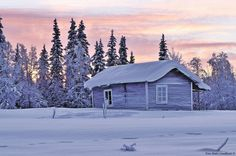 Cold house by aplog1