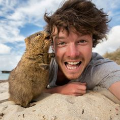 If you're an animal lover and love photographing, Allan Dixon will be your favorite person on earth. This guy is practically the master of selfies with animals. Thanks to his unique way of shooting animals, Happy Animals, Animals And Pets, Funny Animals, Cute Animals, Wild Animals, Selfies, Quokka Animal, Wild Creatures, Australian Animals