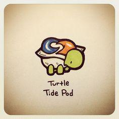 Turtle Gimp