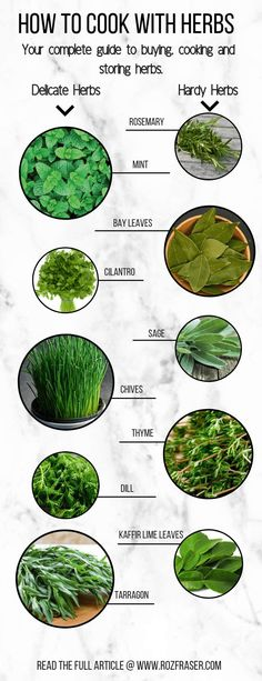 How to cook with herbs - complete guide to buying, using and storing herbs. Plant Based Snacks, Plant Based Diet, Plant Based Recipes, Raw Food Recipes, Veggie Recipes, Healthy Recipes, Food Tips, Cooking With Fresh Herbs, Cooking Herbs