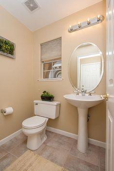 Toilet, City, Litter Box, Toilets, Powder Rooms