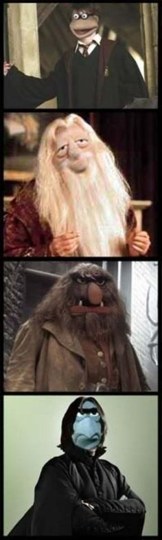 Muppets as Harry Potter characters @Amanda Fetters...the last one kills me!