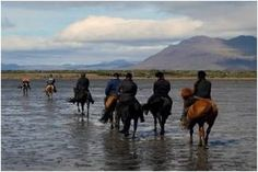 H4H Iceland Horse Trek  6th -13th July 2013  We are delighted to bring you a new challenge and the opportunity to explore Iceland on horseback; this is the land of glaciers and volcanoes and is not to be missed!