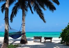Photo about Perfect tropical beach of Zanzibar island with palm trees, sunbeds and hammock. Image of paradise, tourism, shore - 16519051 Inclusive Holidays, All Inclusive, Best Car Rental Deals, Wanderlust, Travel Party, Stay The Night, Beautiful Islands, Beach Resorts, Strand