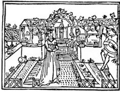 16th and 17th century Medieval gardens were mostly formal and enclosed.  Primarily these gardens were planted to provide food.  Many of the herbs were carefully selected for their meanings and folklore.