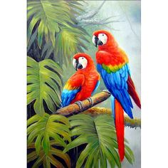 Animal Horse Diamond Painting Full Drill DIY Diamond Embroidery - ✔ Safe and Fast Delivery ✔ Money Back Guarantee 4 Great reasons to buy from us: Prime - Art Tropical, Tropical Birds, Exotic Birds, Colorful Birds, Parrot Painting, Painting Flowers, Paintings Famous, Paintings Of Birds, Bird Art